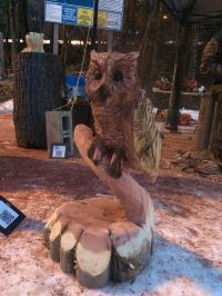 Cedar owl.